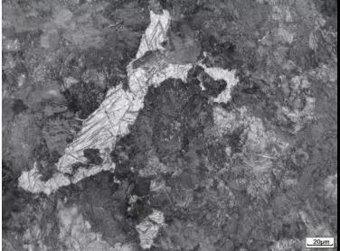 图4  珠光体+点状马氏体(风压0.24MPa)