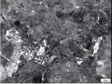 图5  珠光体+点状马氏体(风压0.20MPa)